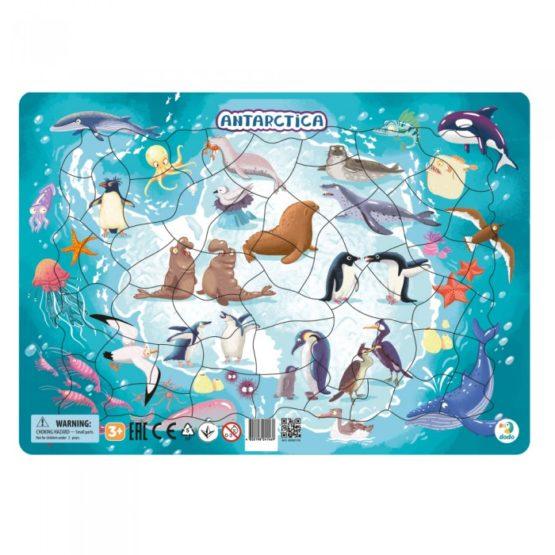 Puzzle Rama – Antarctica